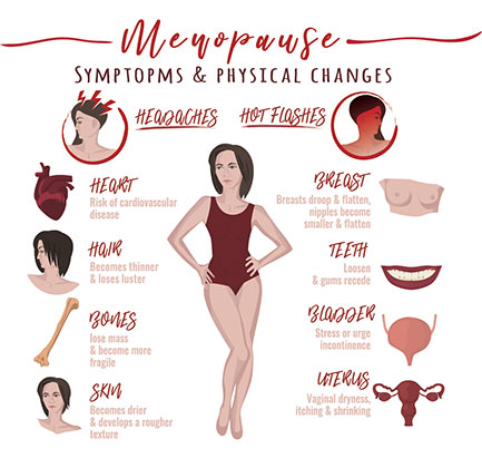 Menopause symptoms and physical changes include headaches, hot flashes, risk of cardiovascular disease, hair becomes thinner, bones lose mass, skin becomes dryer, breasts droop and flatten, nipples become smaller and flatten, teeth loosen, gums recede, bladder incontinence, and vaginal dryness, itching and shrinking.